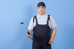 Bed Bug Exterminator providing service in the Naperville area